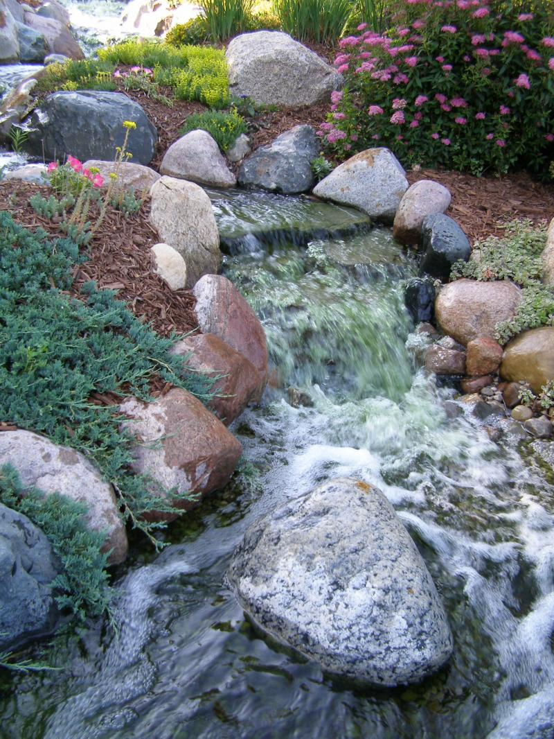 Weekending retail pond supplies for Pond retailers